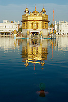 Inde, état du Pendjab, Amritsar, Harmandir Sâhib (Temple d'Or), centre spirituel et culturel de la communauté sikh // India, Penjab, Amritsar, Harmandir Sahib (Golden Temple), spiritual and cultural centre of the Sikh Religion