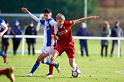BLACKBURN, ENGLAND - Saturday, January 6, 2018: Liverpool's Paul Glatzel and Blackburn Rovers' Matty Chan during an Under-18 FA Premier League match between Blackburn Rovers FC and Liverpool FC at Brockhall Village Training Ground. (Pic by David Rawcliffe/Propaganda)