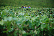France: Champagne