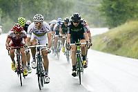 Sykkel , 19. juli 2011 , TOUR DE FRANCESTAGE 16 - Saint-Paul-Trois Châteaux > Gap (162,5km) -<br />  THOR HUSHOVD (NOR) / GARMIN CERVELO / WINNER<br /> <br /> Norway only