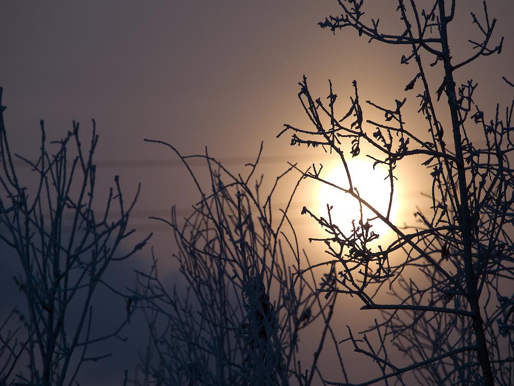 Sonnenaufgang in einer sibirische Winterlandschaft in der N&auml;he der Stadt Jakutsk. Jakutsk wurde 1632 gegruendet und feierte 2007 sein 375 jaehriges Bestehen. Jakutsk ist im Winter eine der kaeltesten Grossstaedte weltweit mit durchschnittlichen Winter Temperaturen von -40.9 Grad Celsius. Die Stadt ist nicht weit entfernt von Oimjakon, dem Kaeltepol der bewohnten Gebiete der Erde.<br /> <br /> Sunrise in a Siberian winter landscape close to the city of Yakutsk. Yakutsk was founded in 1632 and celebrated 2007 the 375th anniversary. Yakutsk is a city in the Russian Far East, located about 4 degrees (450 km) below the Arctic Circle. It is the capital of the Sakha (Yakutia) Republic (formerly the Yakut Autonomous Soviet Socialist Republic), Russia and a major port on the Lena River. Yakutsk is one of the coldest cities on earth, with winter temperatures averaging -40.9 degrees Celsius.