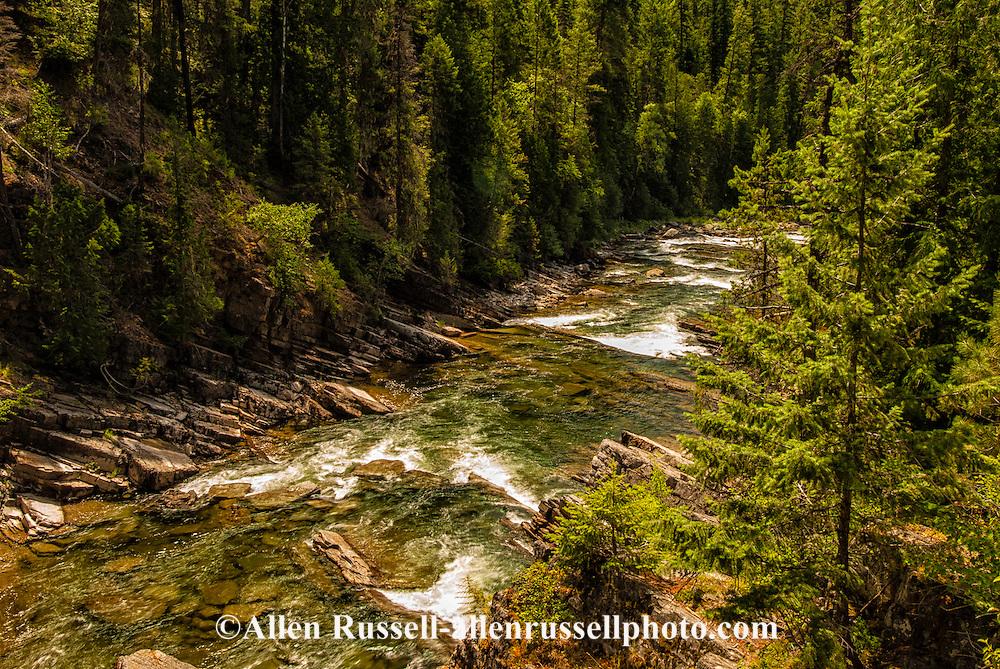 Yaak River, above confluence with Kootenai River, Kootenai National Forest, Montana