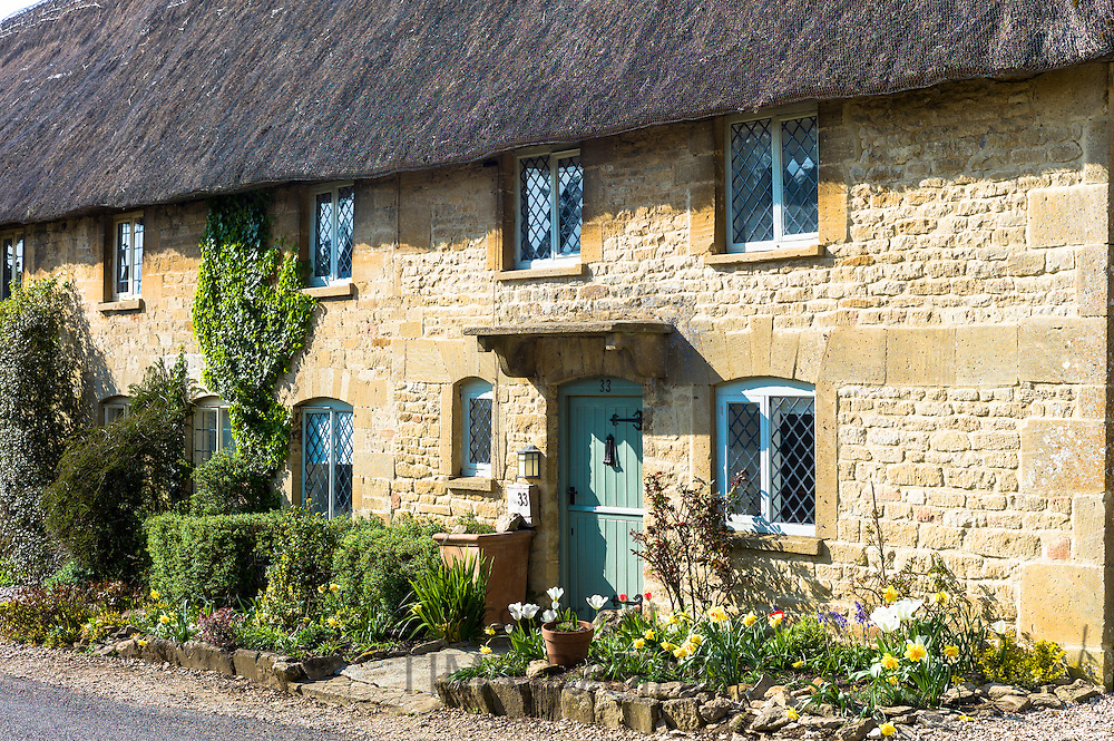 Charming pretty thatched cottage with thatching leaded light windows and spring flowers at Taynton, The Cotswolds, Oxfordshire, UK