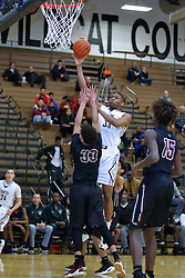 13 January 2017: IHSA Boys Basketball game between the Peoria High Lions and the Normal West Wildcats at Normal Illinois