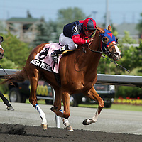Thoroughbred Racing 2012 - Gallery 04