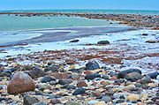 Ice freeze up. Hudson Bay coastline. Subarctic.<br />
