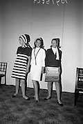 11/10/1966<br />