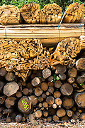 Timber planks and logs stacked to become seasoned wood at Interlaken in the Bernese Oberland, Switzerland