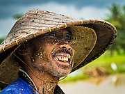 18 JULY 2016 - UBUD, BALI, INDONESIA:     A mud splattered farmer after tilling a rice field before planting. Rice is an integral part of the Balinese culture. The rituals of the cycle of planting, maintaining, irrigating, and harvesting rice enrich the cultural life of Bali beyond a single staple can ever hope to do. Despite the importance of rice, Bali does not produce enough rice for its own needs and imports rice from nearby Thailand.    PHOTO BY JACK KURTZ