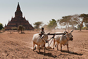 Bagan, Burma:  4,000 temples in 26 miles radius, these ancient temples rival Angkor Wat as one of the greatest architectural sites of the world.
