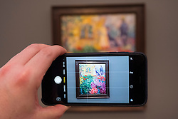 Visitor photographing painting , Flower Garden with Figures by Emil Nolde, at new Museum Barberini in Potsdam Germany