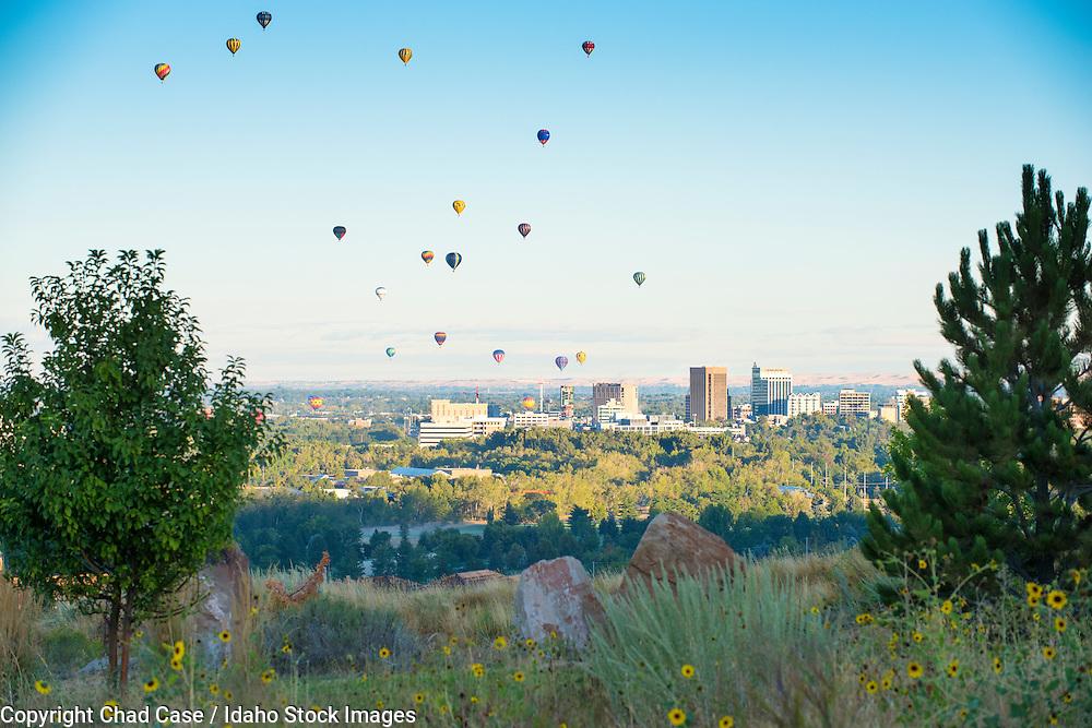 Hot air balloons over Boise.