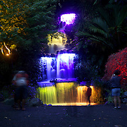 A coloured waterfall during the Festival of Lights  at Pukekura Park. New Plymouth, New Zealand, 19th December  2010 Photo Tim Clayton..