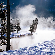 Early morning mist and fog along the Lewis River in Yellowstone National Park.