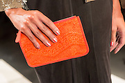 An orange clutch with a snakeskin-like pattern. By Monika Chiang at Spring 2013 Fashion Week in New York.