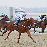 Lingfield 12th December 2012