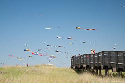 North America, USA, Washington, Long Beach. Kites flying near boardwalk, Washington State Kite Festival