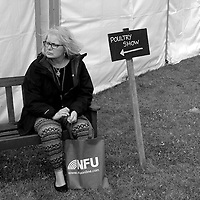 Isle of Wight, Agricultural Show, 2016, Northwood, Isle of Wight, UK,