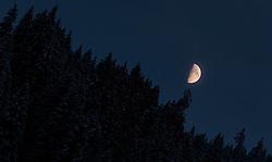 THEMENBILD - der Mond leuchtet über den Bäumen eines Bergrückens, aufgenommen am 08. November 2016, Kaprun, Österreich // the moon shines through the trees of a mountain ridge in Kaprun, Austria on 2016/11/08. EXPA Pictures © 2016, PhotoCredit: EXPA/ JFK