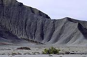 Desert near San Rafael Mountains, Utah