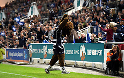 Brizzley bear celebrates - Mandatory byline: Joe Meredith/JMP - 25/05/2016 - RUGBY UNION - Ashton Gate Stadium - Bristol, England - Bristol Rugby v Doncaster Knights - Greene King IPA Championship Play Off FINAL 2nd Leg.