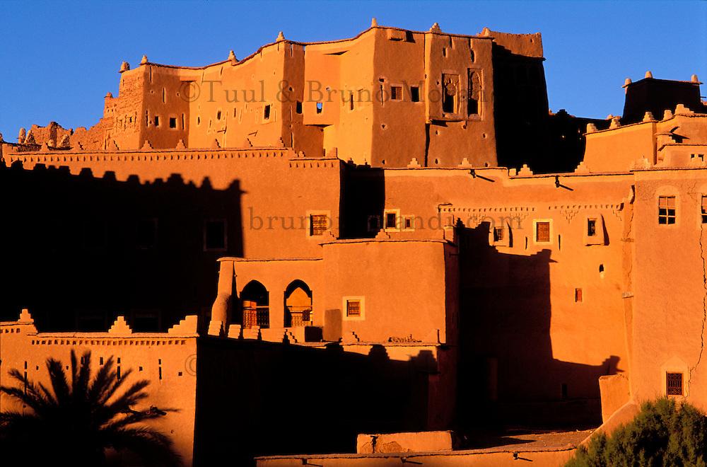Maroc - Haut Atlas - Ouarzazate - Kasbah du Glaoui de Taourirt