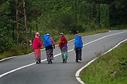 Turkish women going home after working in the Black Sea Mountain tea fileds near Rize<br /> Photography By John Wreford