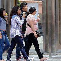 TOLUCA, Mexico (Julio 22, 2016).- Personas que visitan la ciudad de Toluca, disfrutan de una nieve y caminan por la plaza González Arratia, observando las exposiciones que se presentan en las vitrinas de esta plaza. Agencia MVT. José Hernández.