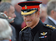 Prince Harry At Field Of Remembrance, London