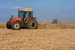 Quando a cana eh colhida sem queima, as colhedoras mecanizadas de cana espalham a palha uniformemente em toda a area de colheita. Algumas usinas fazem o aleiramento (arrumacao da palha em leiras) destas palhas para facilitar a operacao subsequente que eh o cultivado de soqueiras(raizes da cana)./ Crop land being prepared to receive Sugar cane crops
