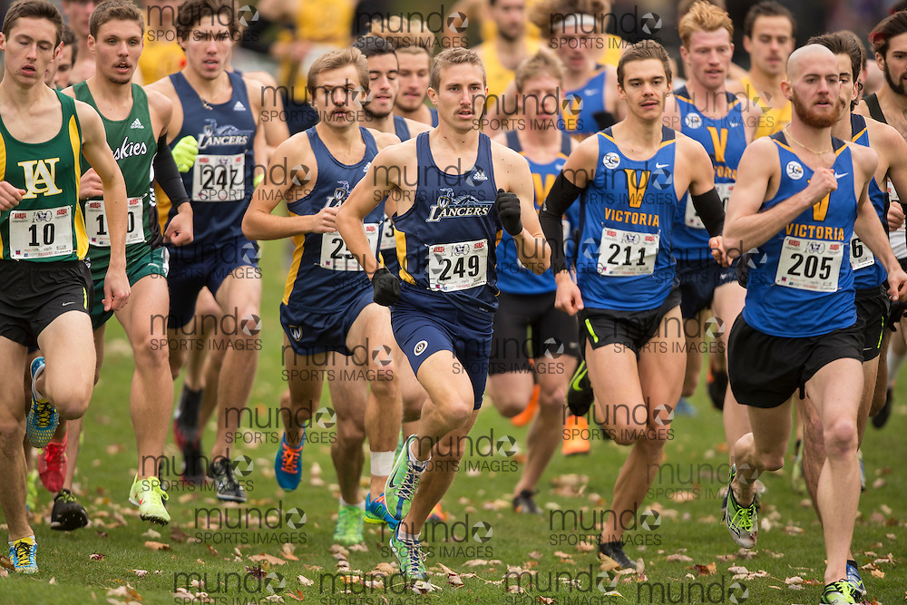 Nick Falk of Windsor Lancers runs in the men's  10K Run at the 2013 CIS Cross Country Championships in London Ontario, Saturday,  November 9, 2013.<br /> Mundo Sport Images/ JULIE ROBINS
