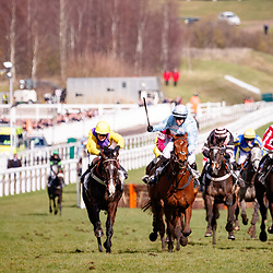 Summerville Boy (N. Fehily) wins The Sky Bet Supreme Novices' Hurdle Race Gr.1 in Cheltenham, 13/03/2018, photo: Zuzanna Lupa