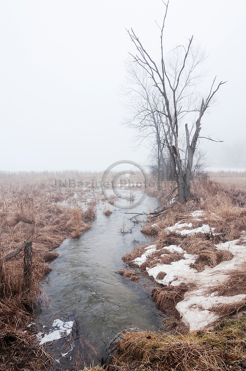 Creeks leads to a lake covered in heavy fog resulting from an early Spring thaw.