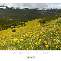Beautiful large format (30x24) posters ready to print of Indian Peaks, The Grand Teton at night, rock climbing in Eldorado Canyon State Park, Colorado and beautiful sunrise in Colorado. These are hi-resolution PDF files. Bring the file to your favorite print shop (Kinkos, Etc..) and print away.