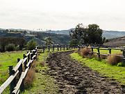 Horse Trail in San Juan Capistrano