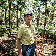 The entrepreneur xearense Italian-born Luigi Vaccaro, is the owner of the largest agricultural project linked to ACAI. The production of raw materials (Core) comes from own plantations irrigated acai, currently with a total of 1,174 hectares.