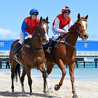 Horses-On the Beach - Rockingham-Kwinana