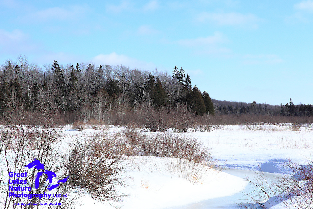This is the Rock River as it wanders its way out of the densely forested wilderness north of Chatham, Michigan. At this point in the protracted winter of 2013-14, the river is almost completely frozen.