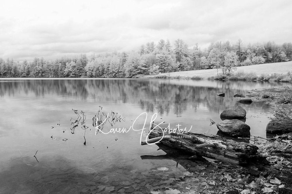 Infrared Salt Marsh Pond Gilford, NH.  ©2015 Karen Bobotas Photographer
