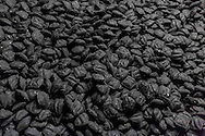 Charcoal await packaging at a Kingsford manufacturing plant in Belle, Missouri.