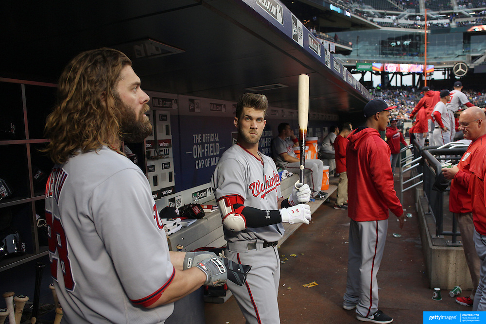 NEW YORK, NEW YORK - May 17: Jayson Werth #28, (left), of the Washington Nationals and Bryce Harper #34 of the Washington Nationals in the dugout preparing to bat during the Washington Nationals Vs New York Mets regular season MLB game at Citi Field on May 17 2016 in New York City. (Photo by Tim Clayton/Corbis via Getty Images)