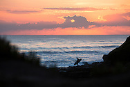 Surfer heading out to the waves at sunset, Santa Cruz, California