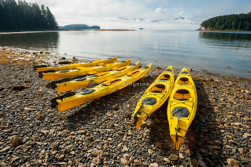 Yellow kayaks lined up on a rocky beach in Saginaw Bay on Alaska's inside passage.