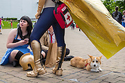 UNITED KINGDOM, London: 27 May 2016 Cosplay fans hang out at the MCM London Comic Con held all this weekend at The ExCeL Centre. The comic convention will see an estimated 150,000 cosplay and comic fans flock to the exhibition. Rick Findler / Story Picture Agency