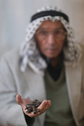 59645960 .Abu Hafez, a 68-year-old Palestinian, holds the keys of the former house displaced since 1948,, in Al-Jalazoun Refugee camp near Ramallah in the West Bank on May 14, 2013. Palestinians are preparing for Nakba Day on May 15, marking thousands of Palestinians that were forced to leave their homes during the Arab-Israeli war in 1948, May 14, 2013. Photo by: imago / i-Images. UK ONLY