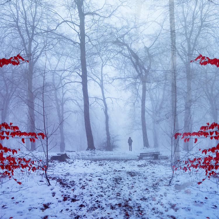 Person auf Weg in verscheitem Wald, digital manipulierte Fotografie, Wuppertal, Deutschland