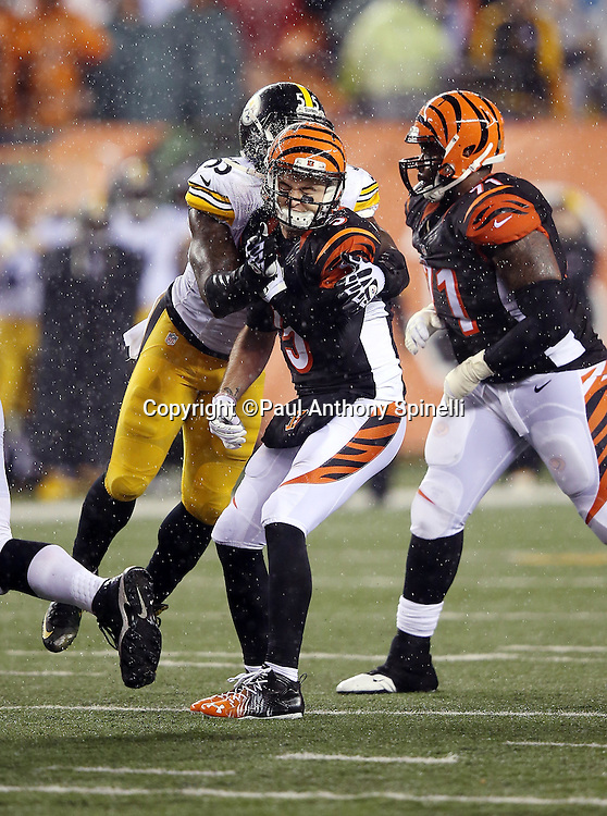 Cincinnati Bengals tackle Andre Smith (71) is late to block as Cincinnati Bengals quarterback AJ McCarron (5) grimaces while getting hit hard by Pittsburgh Steelers outside linebacker Arthur Moats (55) during the NFL AFC Wild Card playoff football game against the Pittsburgh Steelers on Saturday, Jan. 9, 2016 in Cincinnati. The Steelers won the game 18-16. (©Paul Anthony Spinelli)