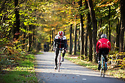Bij Woudenberg genieten wielrenners van het mooie herfstweer.<br /> <br /> Cyclists enjoy the beautiful autumn weather near Woudenberg.
