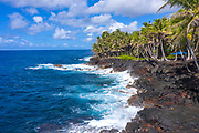 Road, Puna Coastline, Big Island of Hawaii, Hawaii