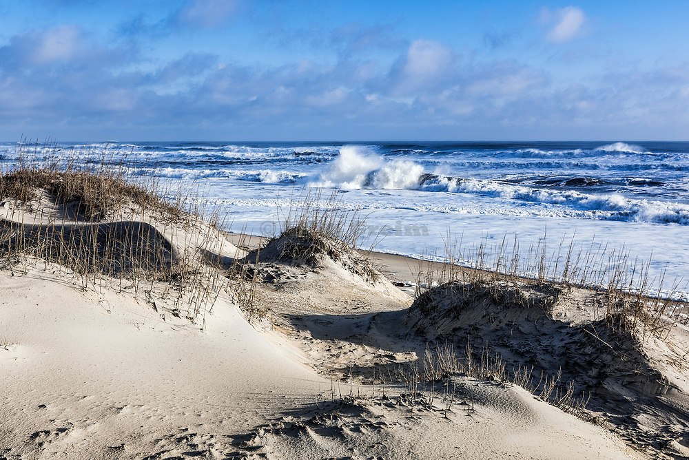 Dunes and beach, Nags Head, Outer Banks, North Carolina, USA.